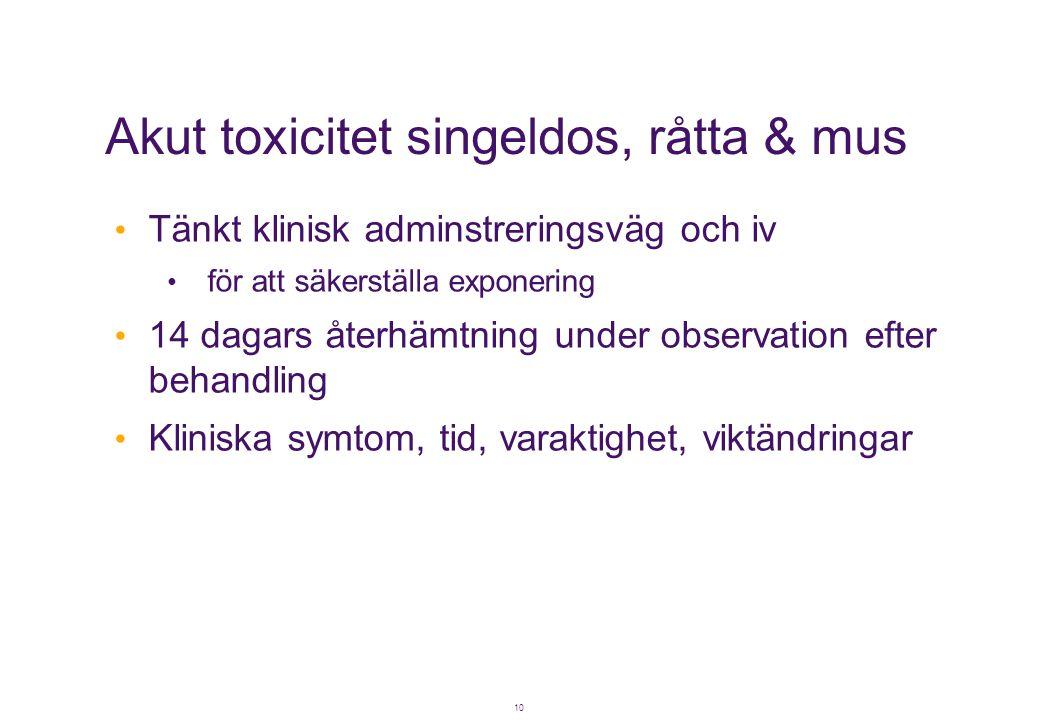 Akut toxicitet singeldos, råtta & mus