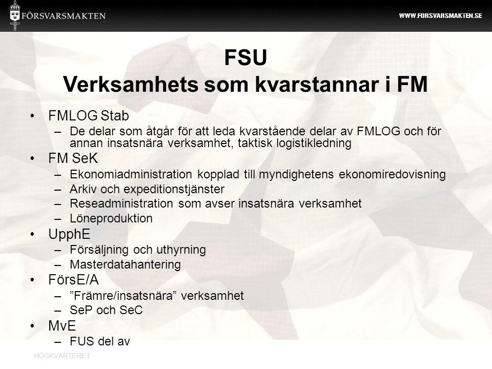 FSU Verksamhets som kvarstannar i FM