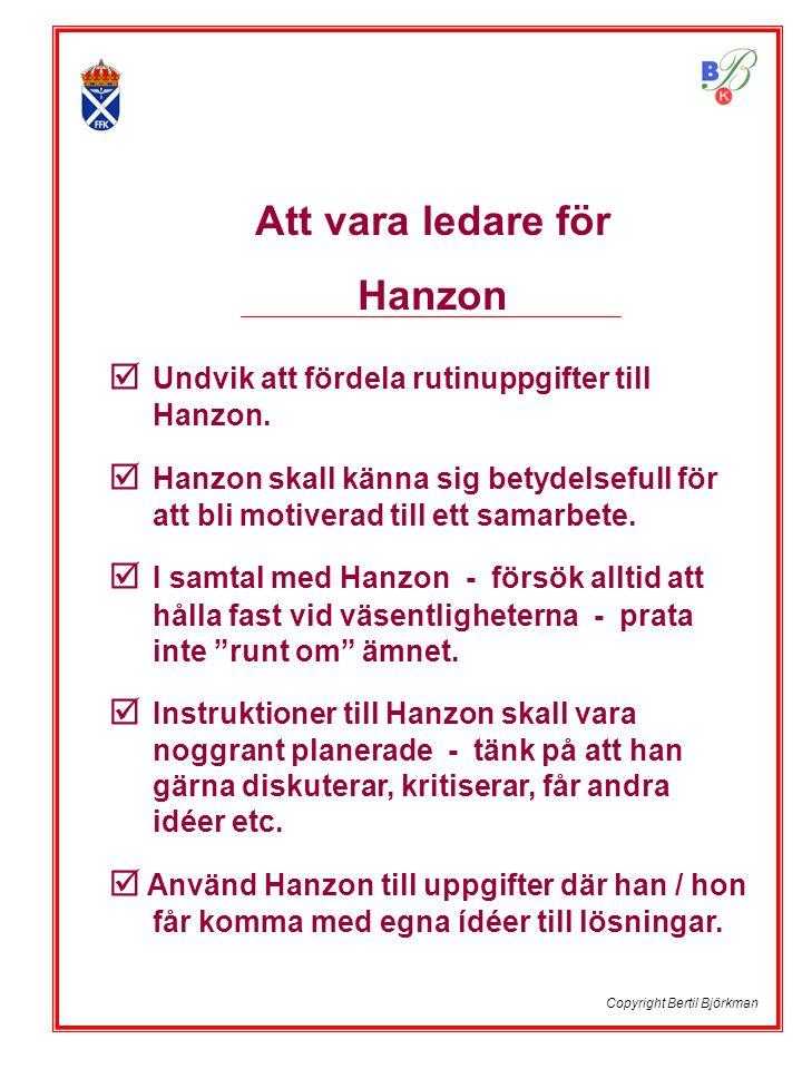 Att vara ledare för Hanzon