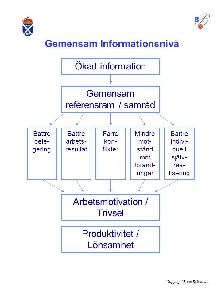 Gemensam Informationsnivå