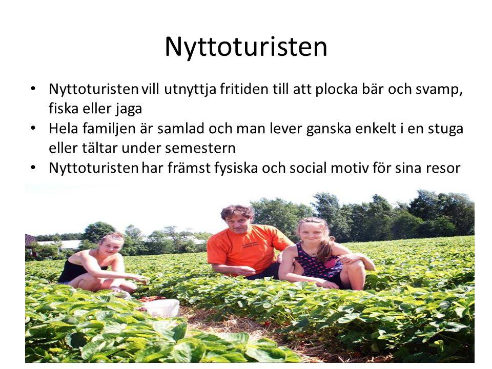 Nyttoturisten Nyttoturisten vill utnyttja fritiden till att plocka bär och svamp, fiska eller jaga.
