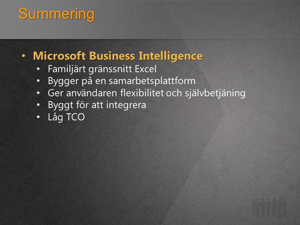 Summering Microsoft Business Intelligence Familjärt gränssnitt Excel