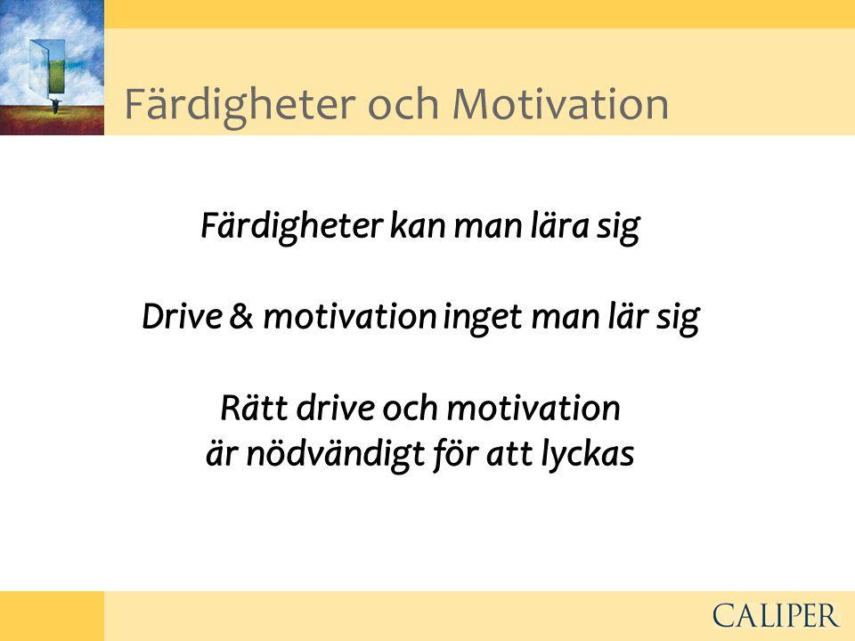 Färdigheter och Motivation