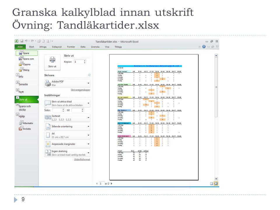 Granska kalkylblad innan utskrift Övning: Tandläkartider.xlsx