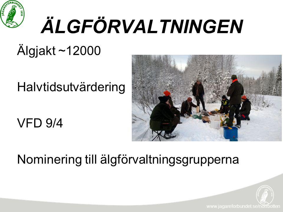 ÄLGFÖRVALTNINGEN Älgjakt ~12000 Halvtidsutvärdering VFD 9/4