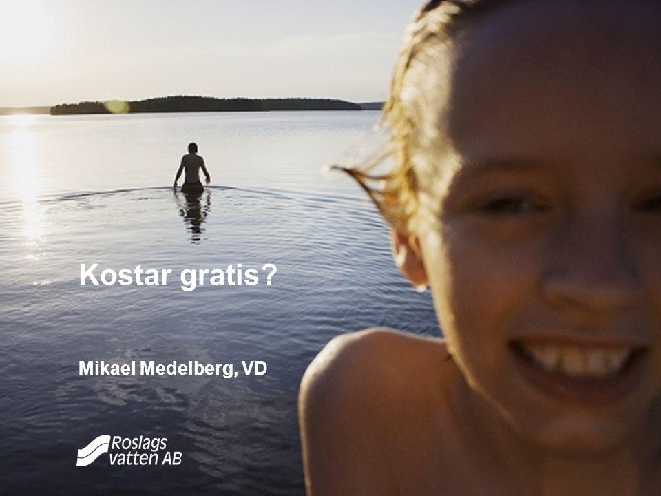 Kostar gratis Mikael Medelberg, VD