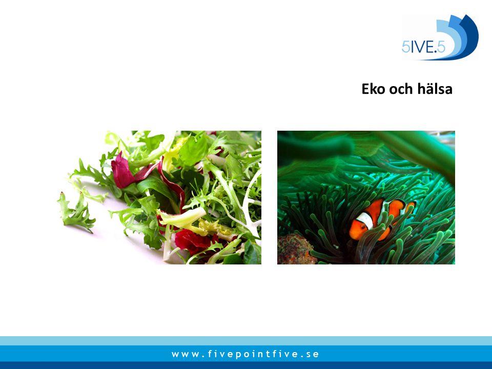 Eko och hälsa