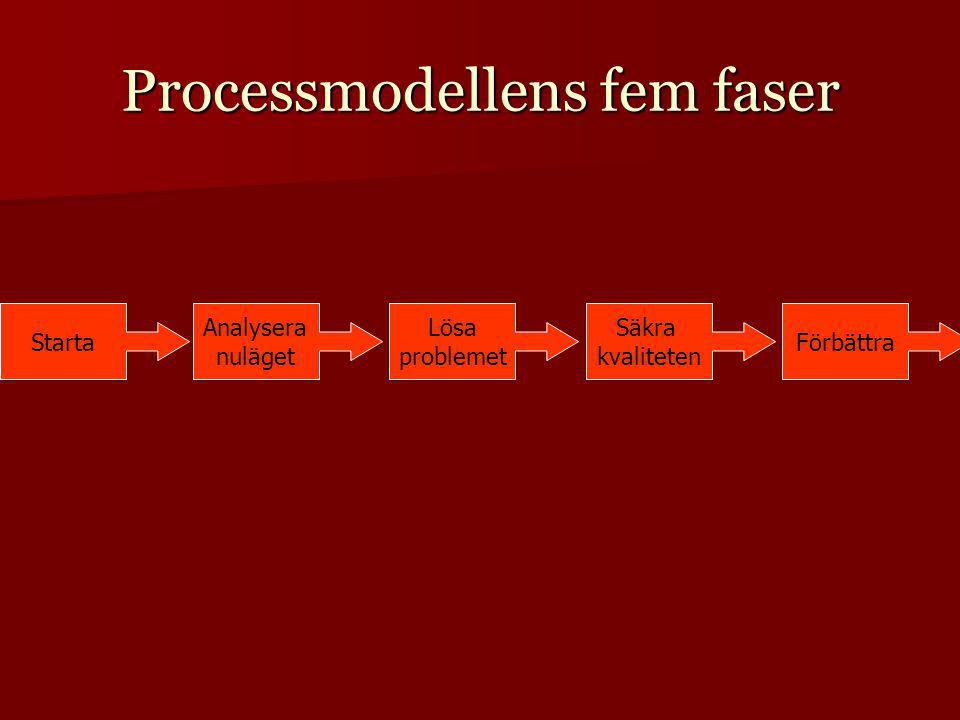 Processmodellens fem faser