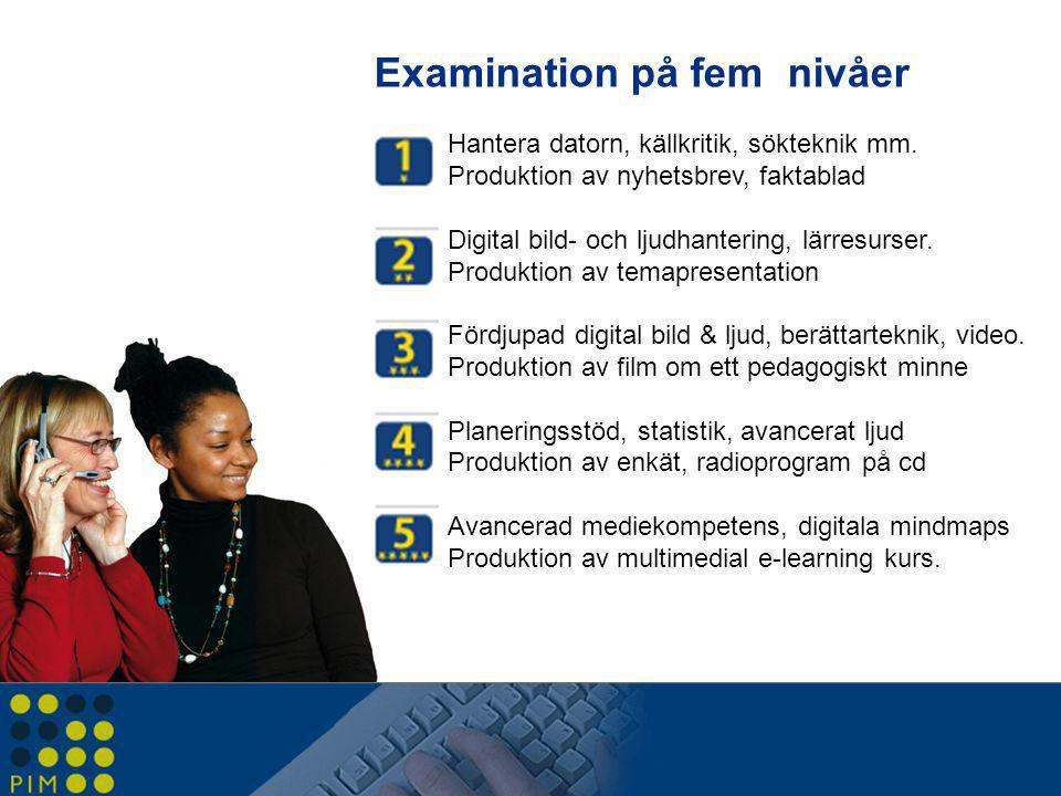 Examination på fem nivåer