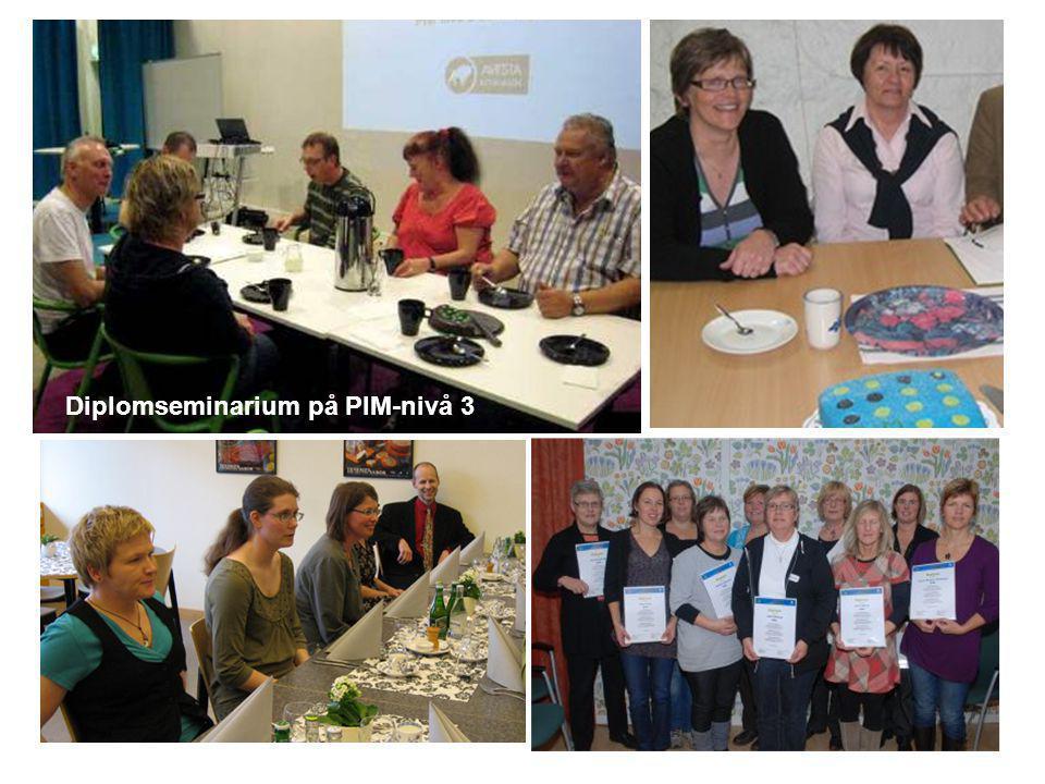 Diplomseminarium på PIM-nivå 3
