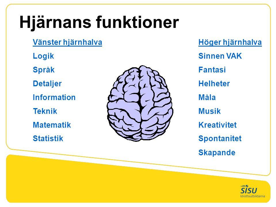 Hjärnans funktioner Vänster hjärnhalva Höger hjärnhalva