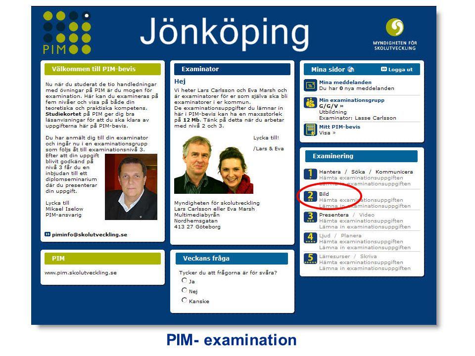 PIM- examination