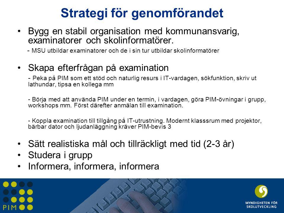 Strategi för genomförandet