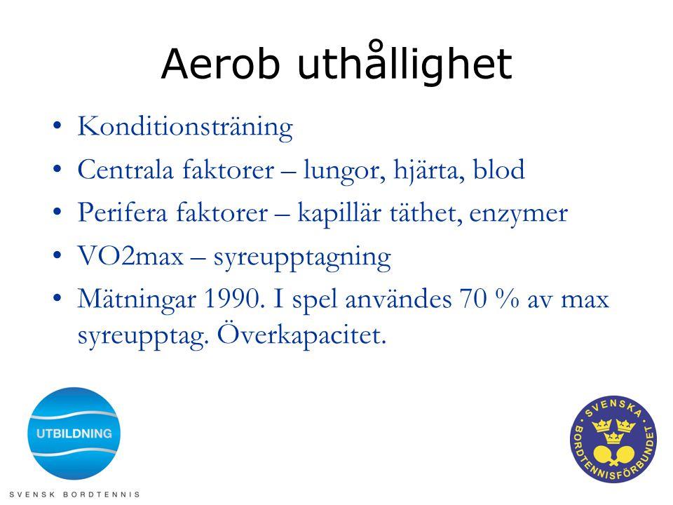 Aerob uthållighet Konditionsträning