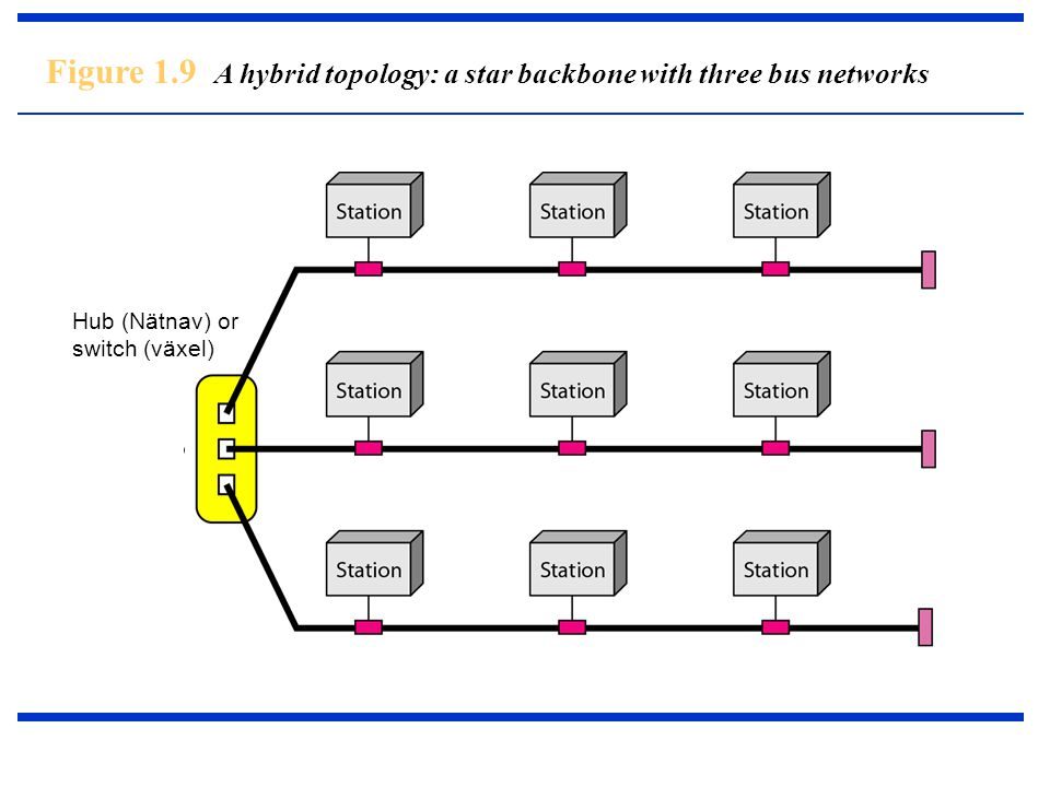 Figure 1.9 A hybrid topology: a star backbone with three bus networks