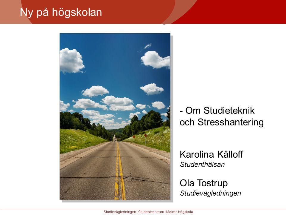 Större mångfald Ny på högskolan - Om Studieteknik och Stresshantering