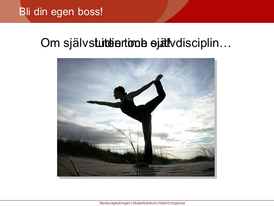 Om självstudier och självdisciplin… Liten time out!