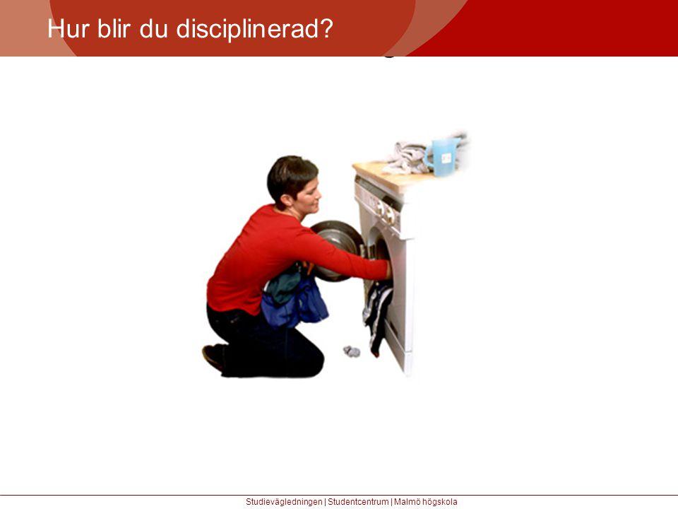 Större mångfald Hur blir du disciplinerad