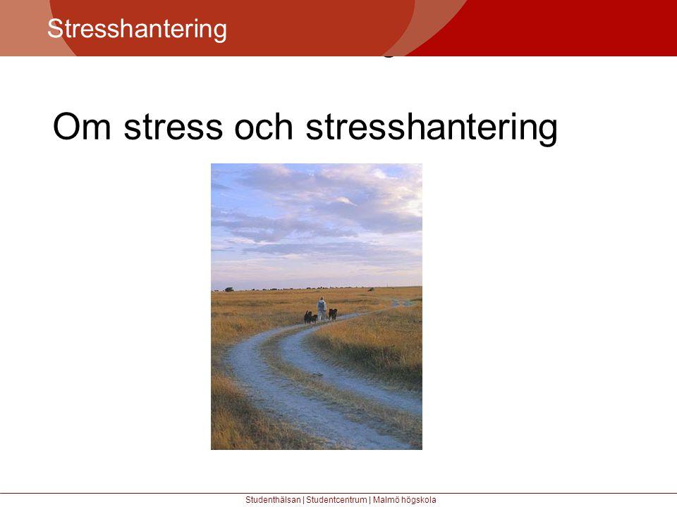 Om stress och stresshantering