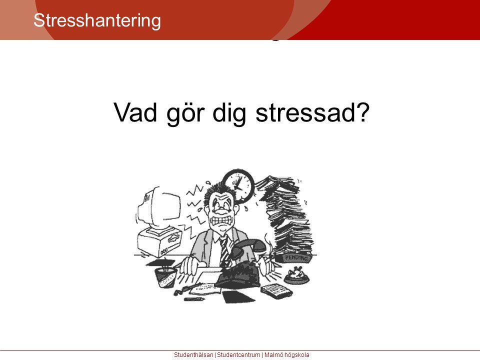 Vad gör dig stressad Större mångfald Stresshantering