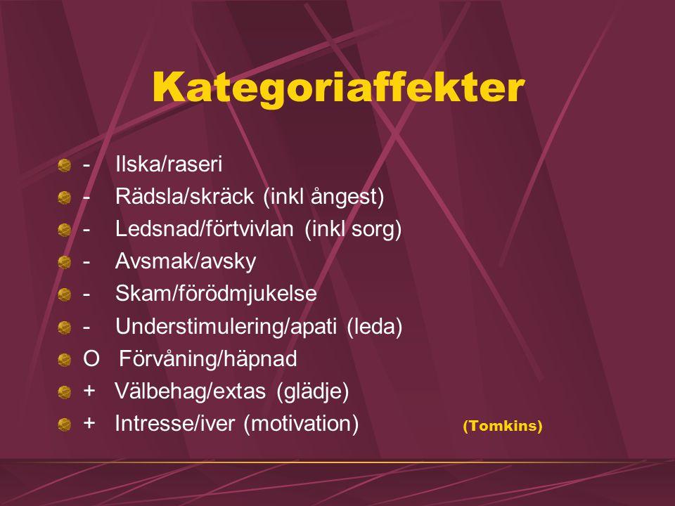 Kategoriaffekter - Ilska/raseri - Rädsla/skräck (inkl ångest)