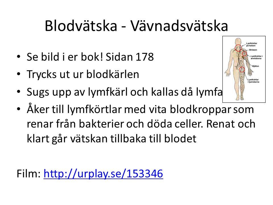 Blodvätska - Vävnadsvätska