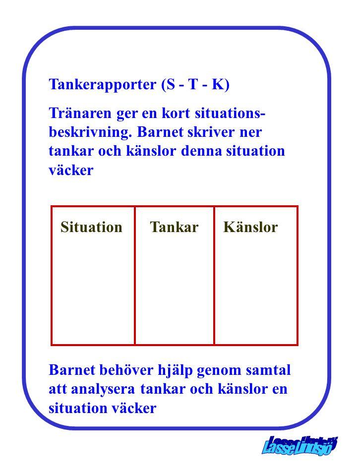 Tankerapporter (S - T - K)
