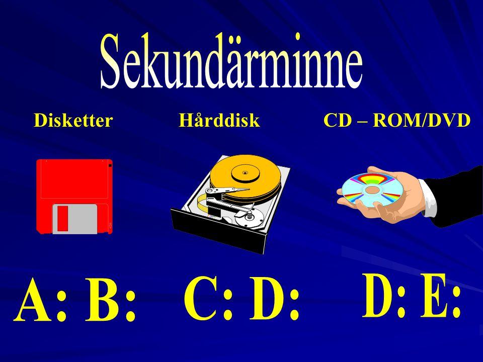 Sekundärminne D: E: A: B: C: D: Disketter Hårddisk CD – ROM/DVD