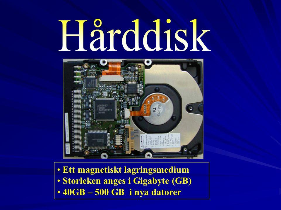 Hårddisk Ett magnetiskt lagringsmedium Storleken anges i Gigabyte (GB)