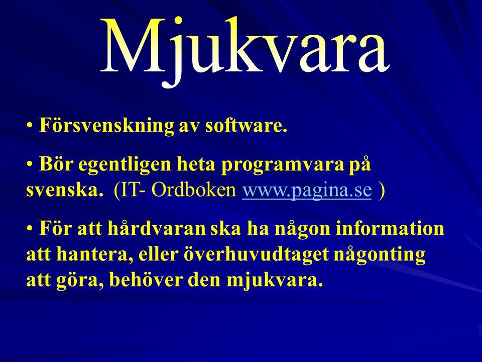 Mjukvara Försvenskning av software.