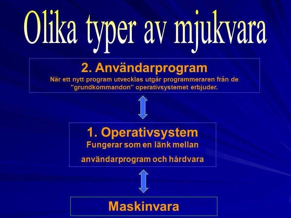 Olika typer av mjukvara