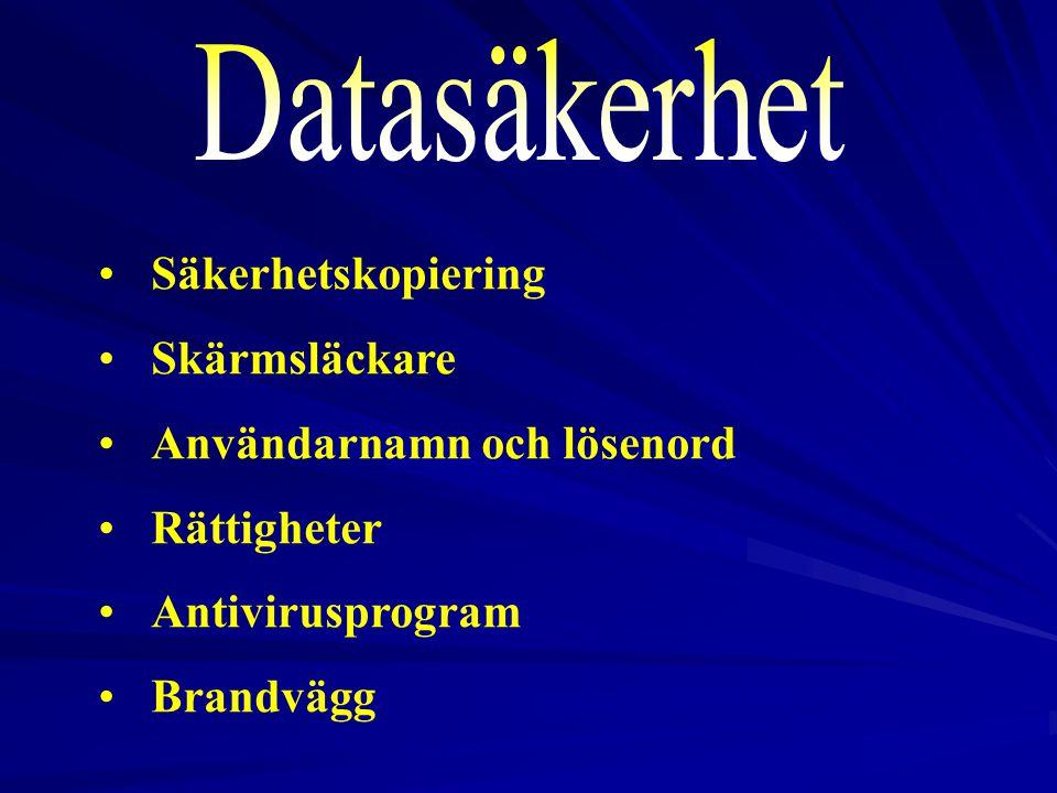 Datasäkerhet Säkerhetskopiering Skärmsläckare