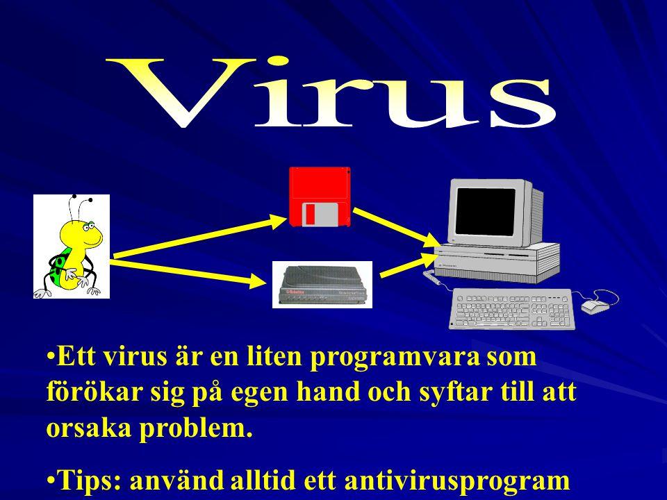 2017-04-03 Virus. Ett virus är en liten programvara som förökar sig på egen hand och syftar till att orsaka problem.