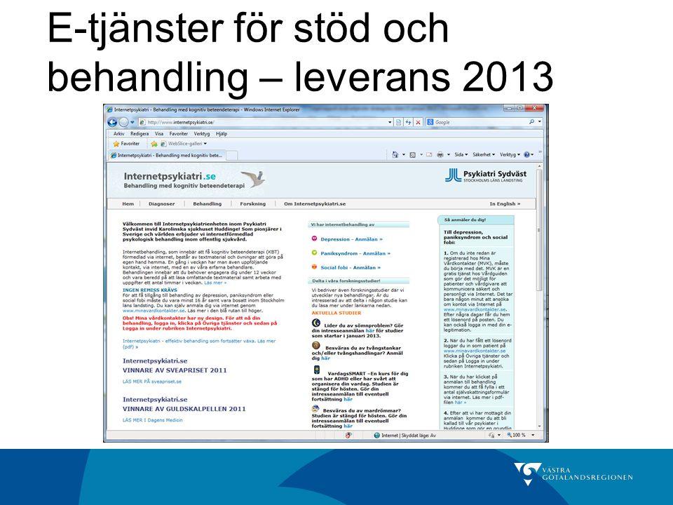 E-tjänster för stöd och behandling – leverans 2013