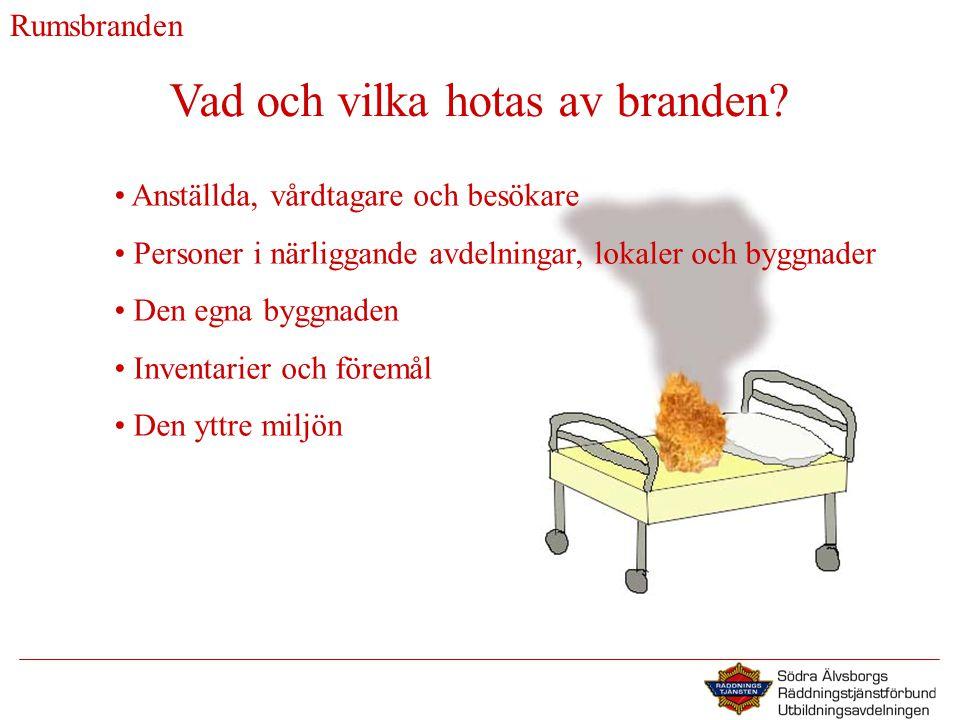 Vad och vilka hotas av branden