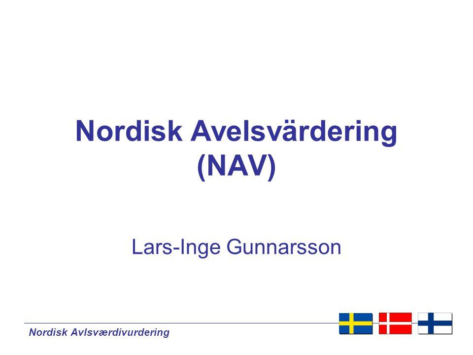 Nordisk Avelsvärdering (NAV)