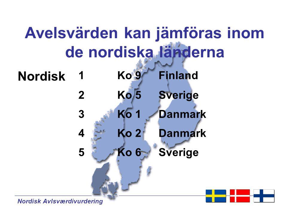 Avelsvärden kan jämföras inom de nordiska länderna