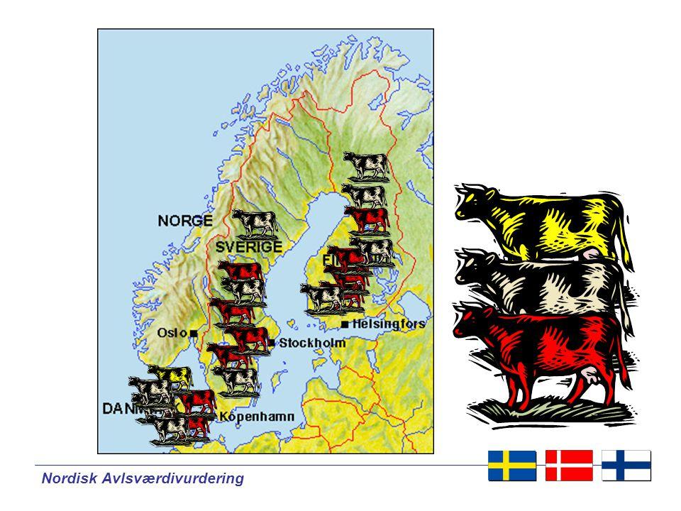 Nordisk Avlsværdivurdering