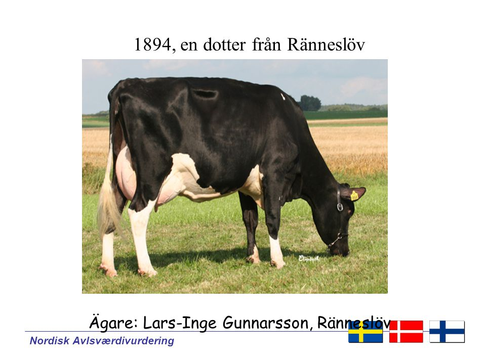 1894, en dotter från Ränneslöv