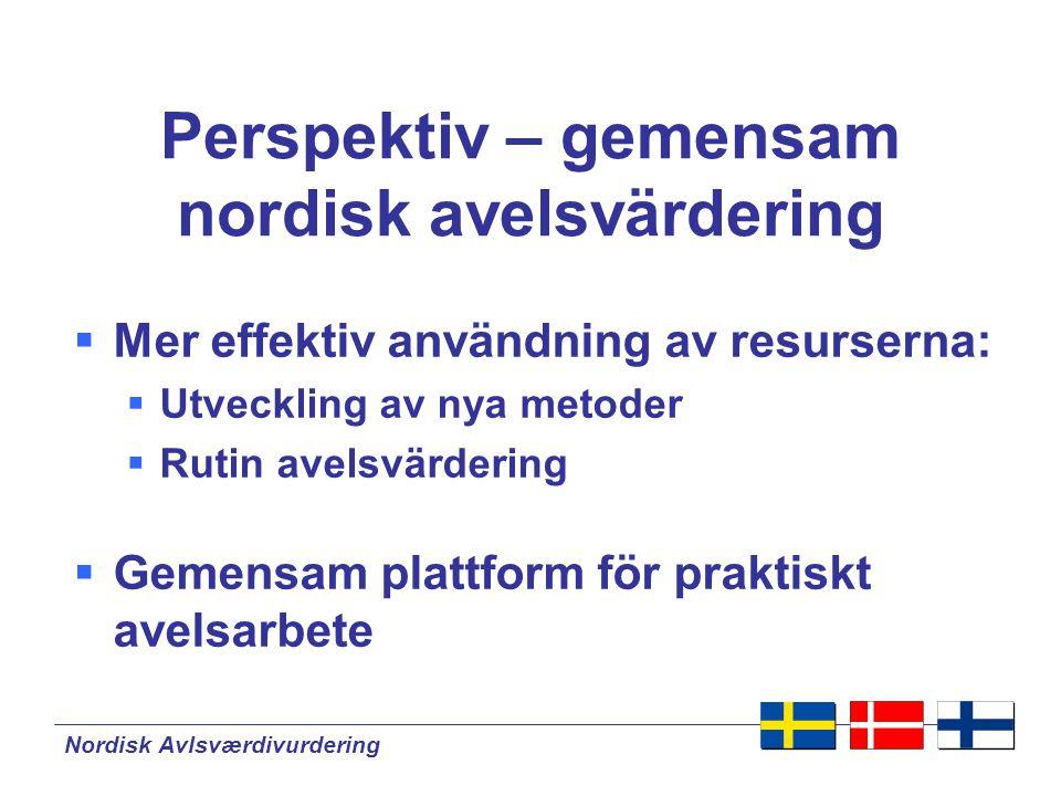 Perspektiv – gemensam nordisk avelsvärdering