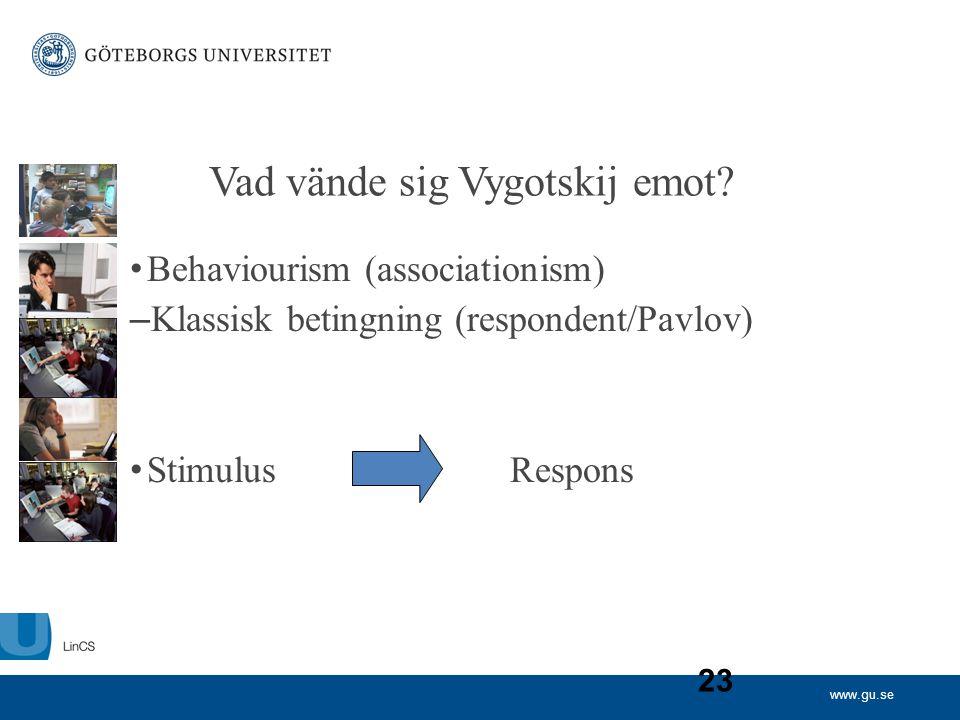 Vad vände sig Vygotskij emot