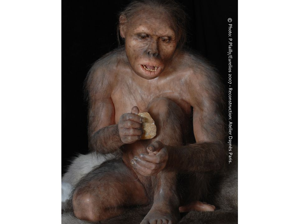 Externalization, Homo habilis 2,5-,18 milj år sedan, ca 1,3 m lång och med hälften av vår hjärnvolym, kommunkation utan språk men med kroppspråk och så småningom någon form av ljud, protospråk