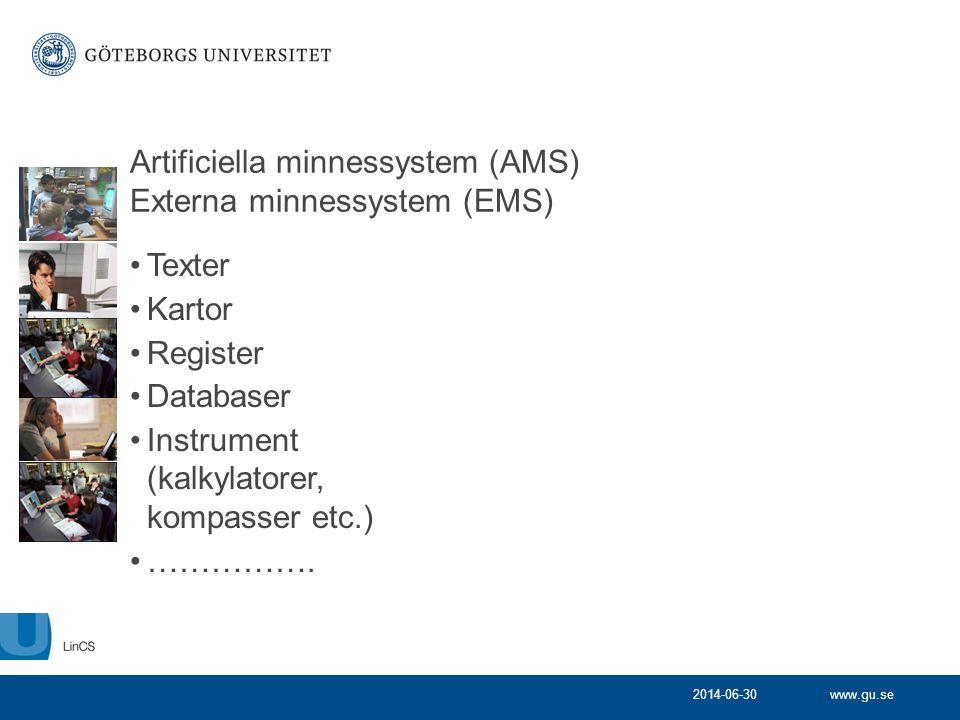 Artificiella minnessystem (AMS) Externa minnessystem (EMS)