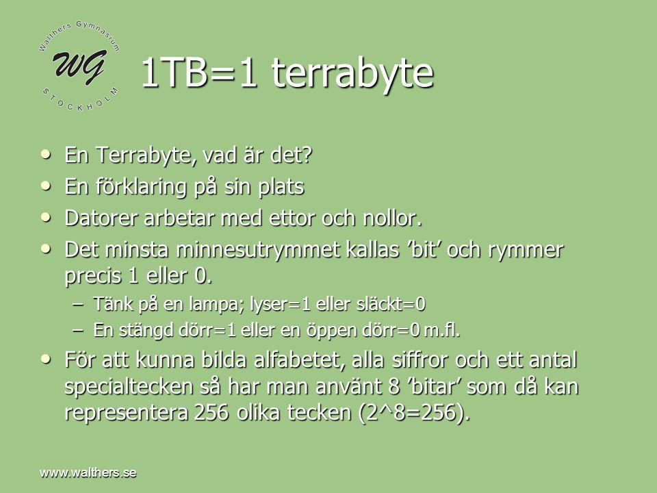1TB=1 terrabyte En Terrabyte, vad är det En förklaring på sin plats