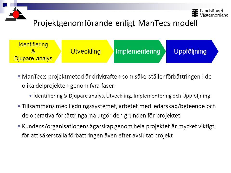 Projektgenomförande enligt ManTecs modell