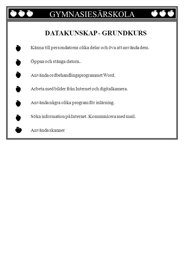 GYMNASIESÄRSKOLA DATAKUNSKAP - GRUNDKURS
