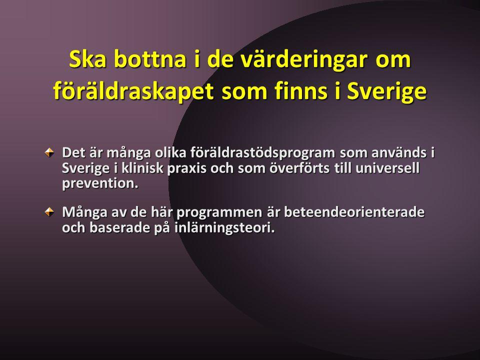 Ska bottna i de värderingar om föräldraskapet som finns i Sverige