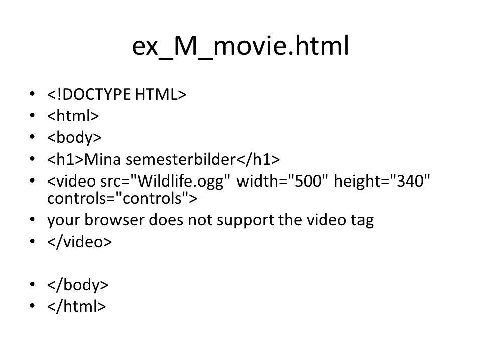 ex_M_movie.html <!DOCTYPE HTML> <html> <body>