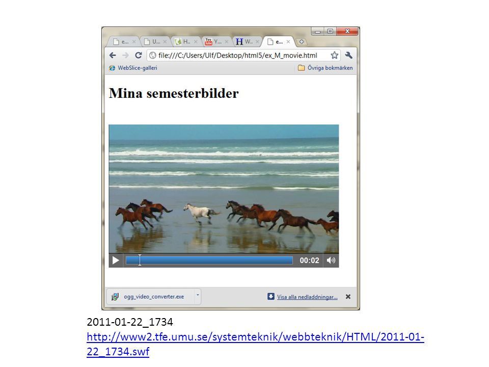 2011-01-22_1734 http://www2.tfe.umu.se/systemteknik/webbteknik/HTML/2011-01-22_1734.swf