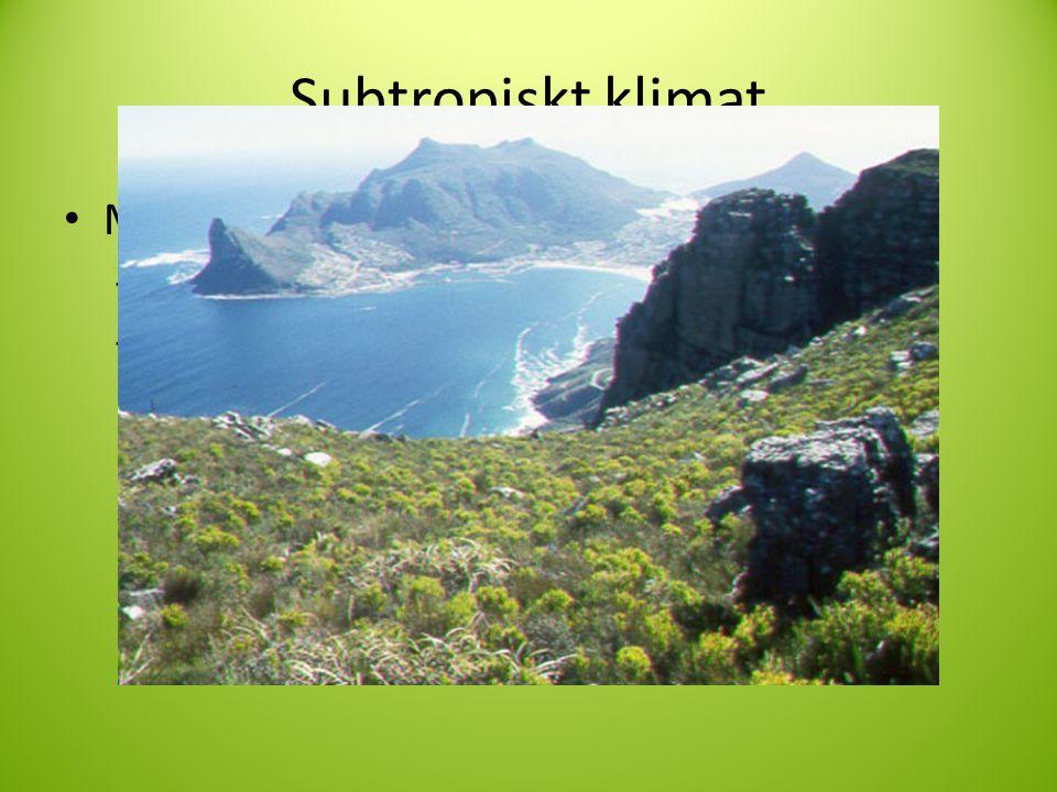 Subtropiskt klimat Medelhavsklimat I Norra Afrika och i Södra.